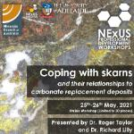 NExUS - Coping with skarns and their relationships to carbonate replacement deposits